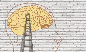 brain-3535300_640